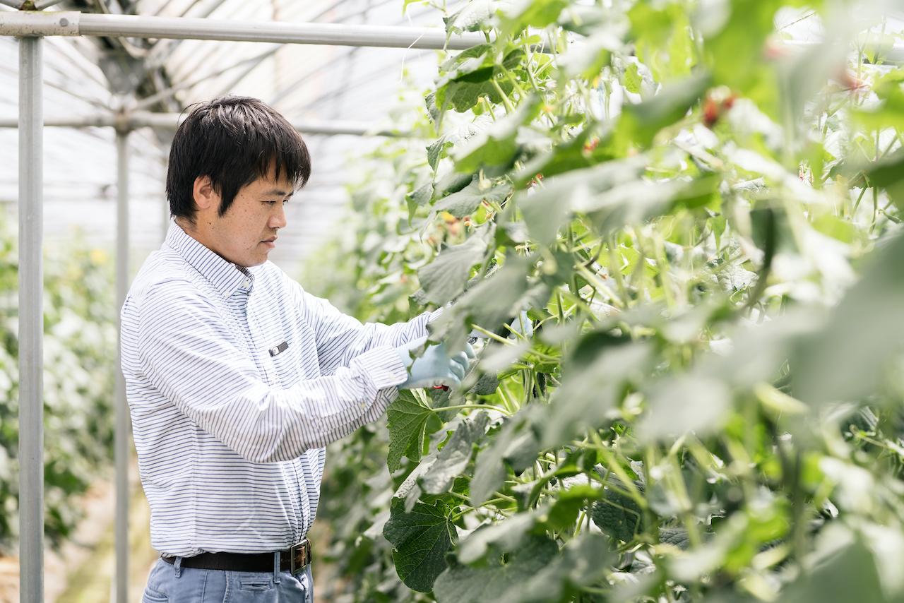 宮崎県新規就農相談センター